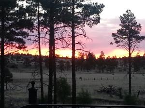 Cabin sunrise